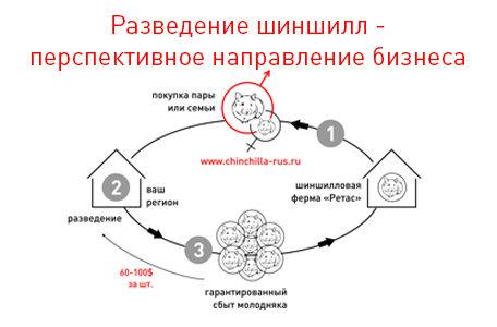 партнерская программа Ретас